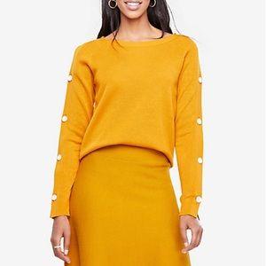 Ann Taylor Golden Button Sleeve Sweater